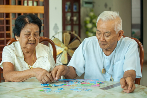 Attaining a Well-Aged Mind for Good Cognitive Health
