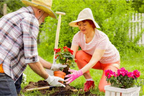 how-healthy-is-gardening-to-seniors